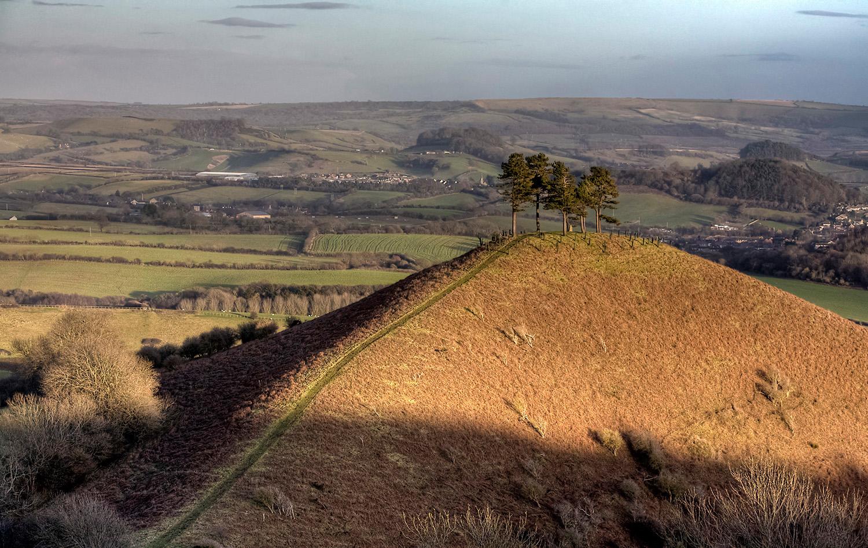 Colmer Hill from Symondsbury