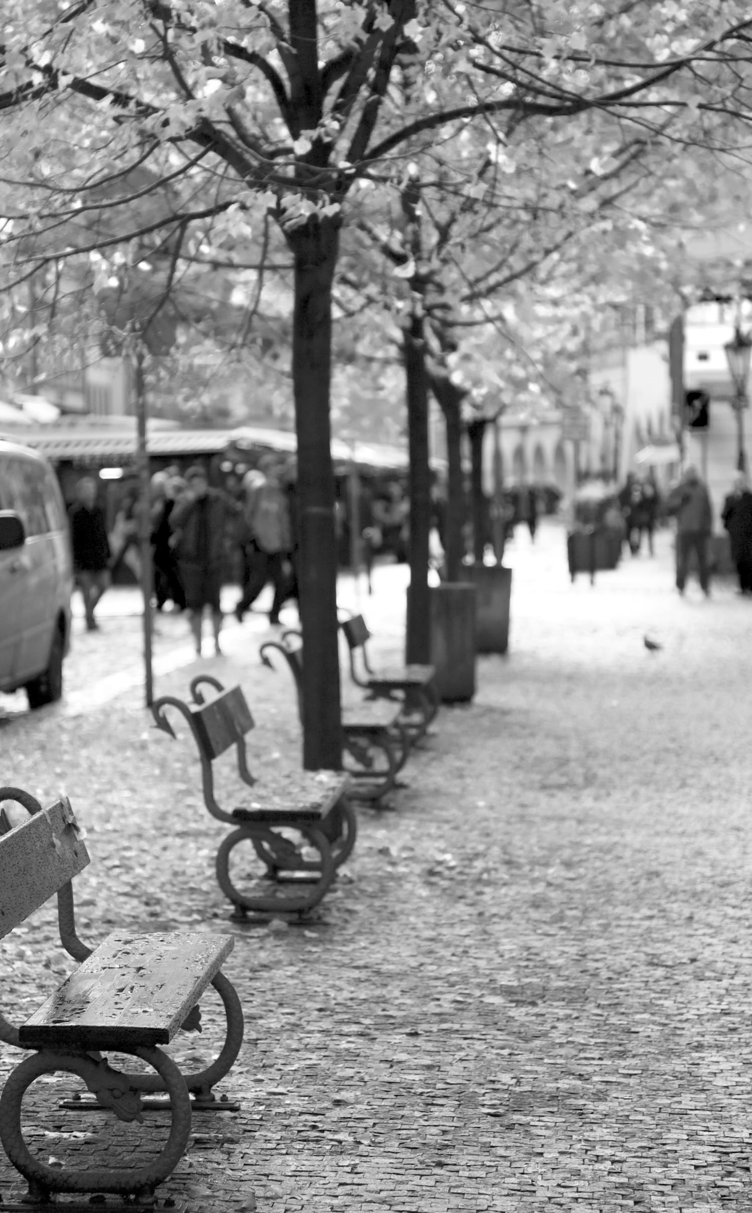 Prague Benches