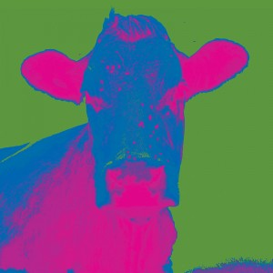 3 New Green Blue cow